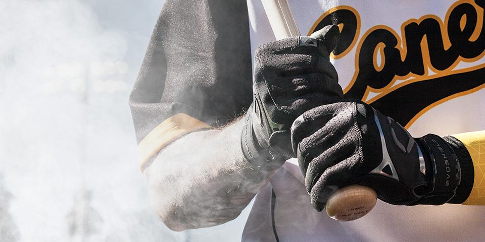 Protective & <br>Performance <br>Batting Gloves